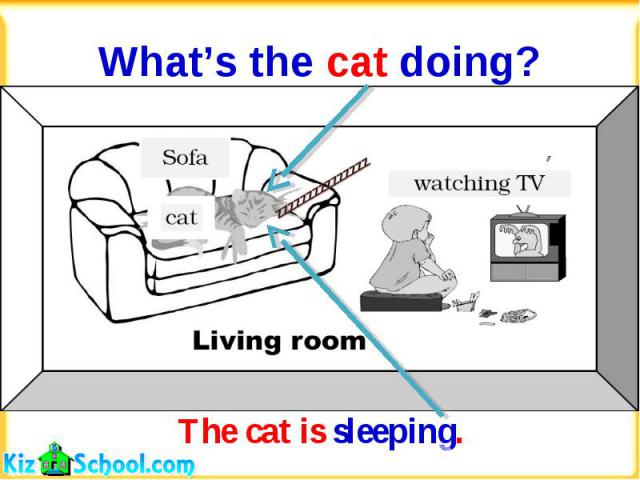 What's the cat doing?The cat is sleeping.