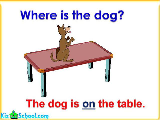 Where is the dog?The dog is on the table.