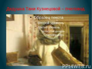 Дедушка Тани Кузнецовой – пчеловод.