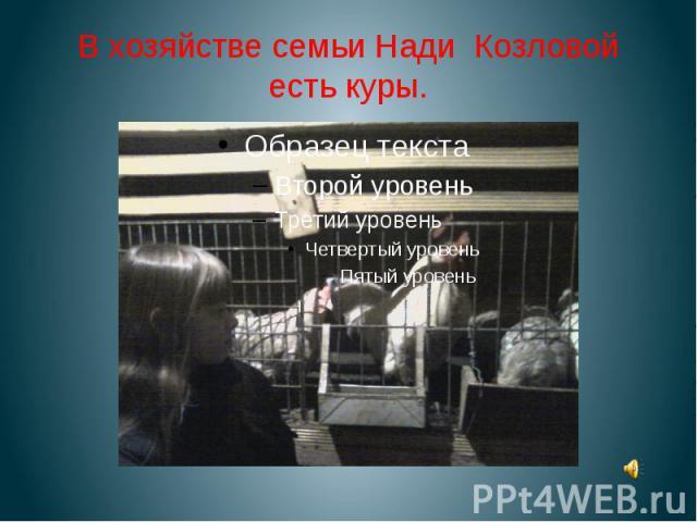 В хозяйстве семьи Нади Козловой есть куры.