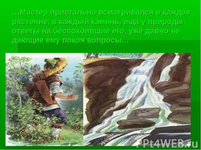…Мастер пристально всматривался в каждое растение, в каждый камень, ища у природы ответы на беспокоившие его, уже давно не дающие ему покоя вопросы…
