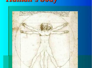 "Human's bodyThe word ""body"""