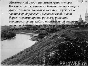 Мелеховский двор - на самом краю хутора. Воротца со скотиньего базаведут на севе