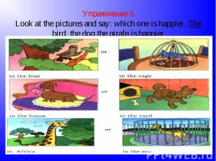 Упражнение 5Look at the pictures and say: which one is happier. The bird, the do