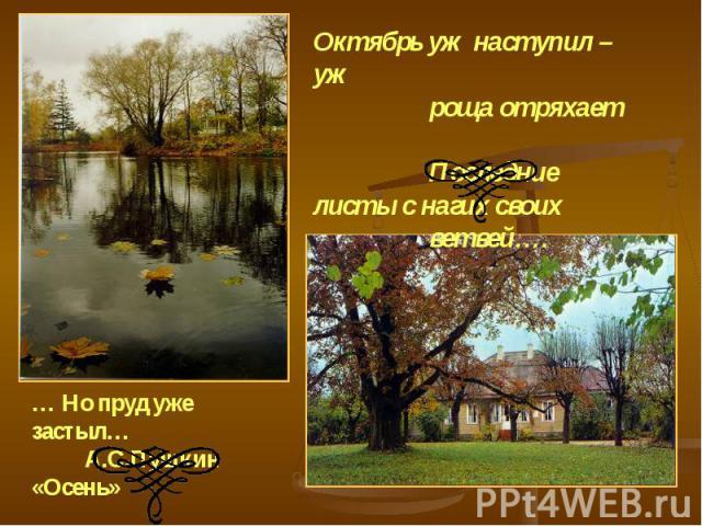 Октябрь уж наступил – уж роща отряхает Последние листы с нагих своих ветвей…. … Но пруд уже застыл… А.С.Пушкин «Осень»
