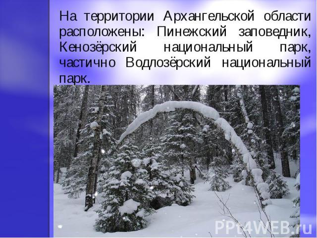 На территории Архангельской области расположены: Пинежский заповедник, Кенозёрский национальный парк, частично Водлозёрский национальный парк.