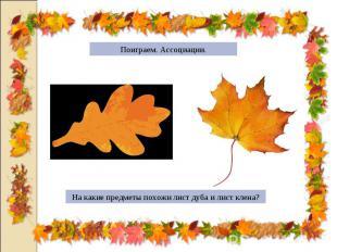 Поиграем. Ассоциации.На какие предметы похожи лист дуба и лист клена?