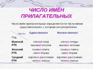 Рабочая программа по русскому языку 2 класс на тему