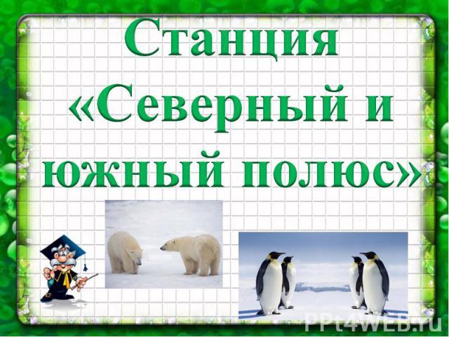 Станция «Северный и южный полюс»