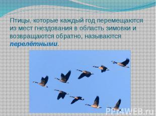 Птицы, которые каждый год перемещаются из мест гнездования в область зимовки и в