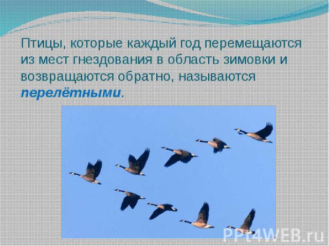 Птицы, которые каждый год перемещаются из мест гнездования в область зимовки и возвращаются обратно, называются перелётными.