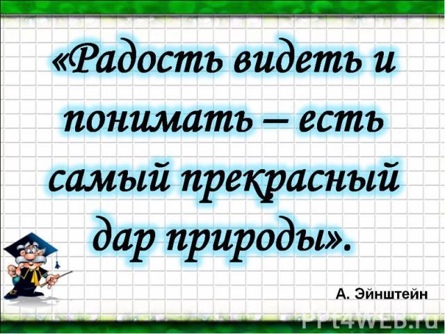 «Радость видеть и понимать – есть самый прекрасный дар природы». А. Эйнштейн