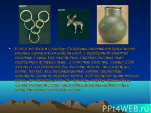 В том же году в станице Старомышастовской при добыче глины в кургане был найден