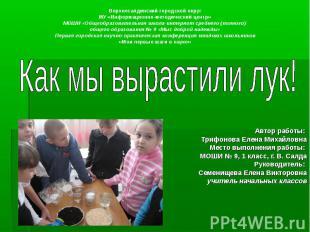 Верхнесалдинский городской округ МУ «Информационно-методический центр» МОШИ «Общ