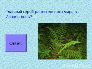 Главный герой растительного мира в Иванов день?