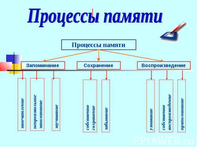 Процессы памяти