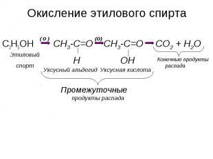 Окисление этилового спиртаПромежуточные продукты распада