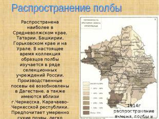 Распространение полбыРаспространена наиболее в Средневолжском крае, Татарии, Баш