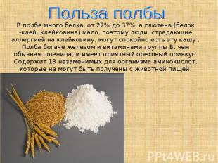 Польза полбыВ полбе много белка, от 27% до 37%, а глютена (белок -клей, клейкови