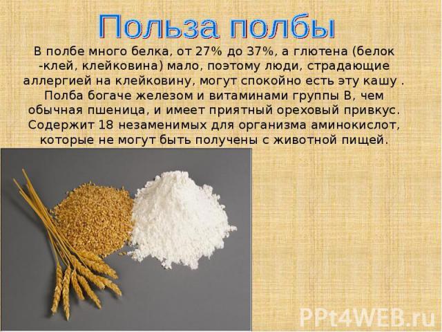 Польза полбыВ полбе много белка, от 27% до 37%, а глютена (белок -клей, клейковина) мало, поэтому люди, страдающие аллергией на клейковину, могут спокойно есть эту кашу . Полба богаче железом и витаминами группы В, чем обычная пшеница, и имеет прият…