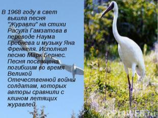 """В 1968 году в свет вышла песня """"Журавли"""" на стихи Расула Гамзатова в переводе На"""
