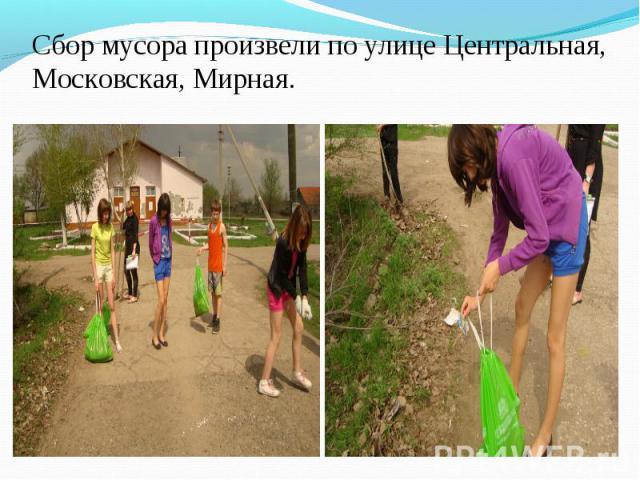 Сбор мусора произвели по улице Центральная, Московская, Мирная.