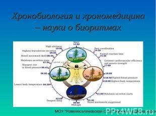 Хронобиология и хрономедицина – науки о биоритмах