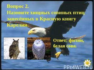Вопрос 2.Назовите хищных совиных птиц занесённых в Красную книгу Карелии.Ответ: