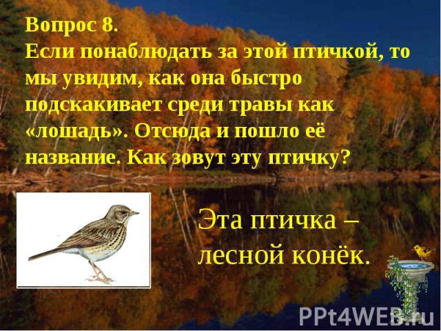 Вопрос 8.Если понаблюдать за этой птичкой, то мы увидим, как она быстро подскакивает среди травы как «лошадь». Отсюда и пошло её название. Как зовут эту птичку?Эта птичка – лесной конёк.