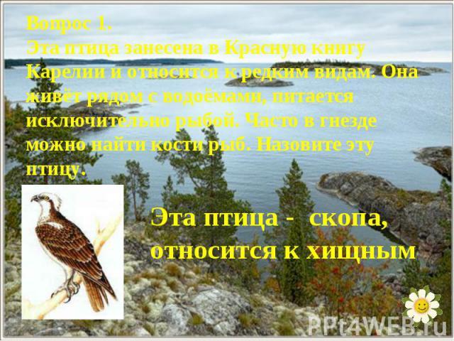 Вопрос 1.Эта птица занесена в Красную книгу Карелии и относится к редким видам. Она живёт рядом с водоёмами, питается исключительно рыбой. Часто в гнезде можно найти кости рыб. Назовите эту птицу.Эта птица - скопа, относится к хищным