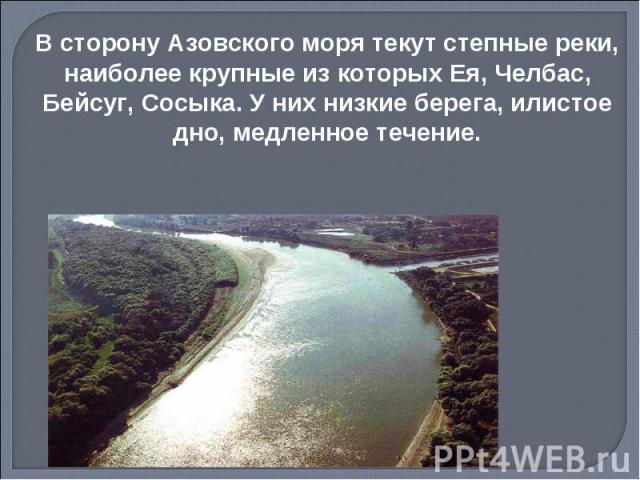 В сторону Азовского моря текут степные реки, наиболее крупные из которых Ея, Челбас, Бейсуг, Сосыка. У них низкие берега, илистое дно, медленное течение.