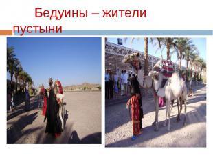 Бедуины – жители пустыни