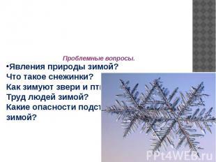 Явления природы зимой?Что такое снежинки?Как зимуют звери и птицы?Труд людей зим