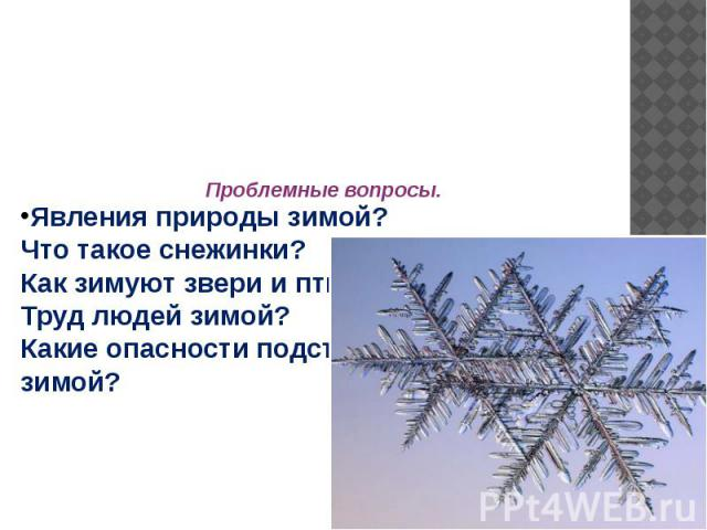 Явления природы зимой?Что такое снежинки?Как зимуют звери и птицы?Труд людей зимой?Какие опасности подстерегают людей зимой?Проблемные вопросы.