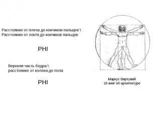 Расстояние от плеча до кончиков пальцев \ Расстояние от локтя до кончиков пальце