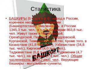 Статистика БАШКИРЫ [б а ш к о р т] - народ в России, коренное население Башкирии