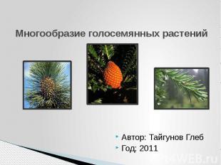 Многообразие голосемянных растений Автор: Тайгунов Глеб Год: 2011