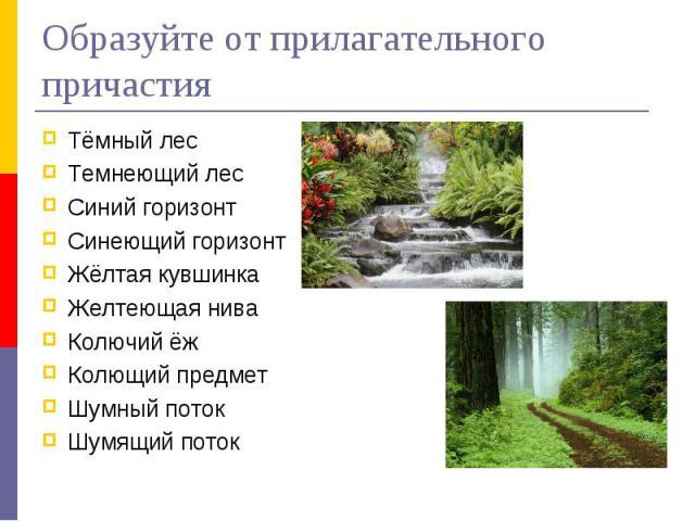 Образуйте от прилагательного причастияТёмный лесТемнеющий лесСиний горизонтСинеющий горизонтЖёлтая кувшинкаЖелтеющая ниваКолючий ёжКолющий предметШумный потокШумящий поток