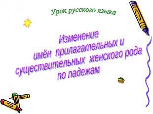Урок русского языка Изменение имён прилагательных и существительных женского род