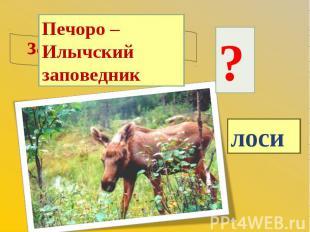 Печоро – Илычский заповедник