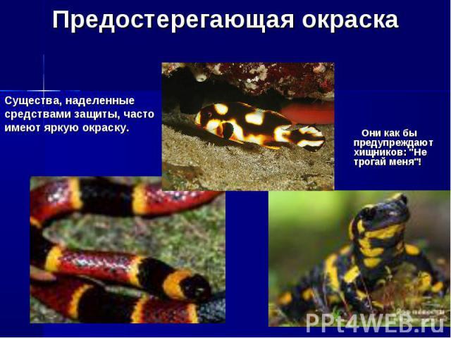 Предостерегающая окраскаСущества, наделенные средствами защиты, часто имеют яркую окраску. Они как бы предупреждают хищников: