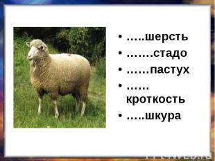 …..шерсть…….стадо……пастух……кроткость…..шкура