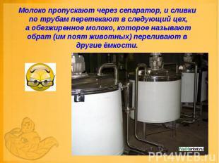 Молоко пропускают через сепаратор, и сливки по трубам перетекают в следующий цех