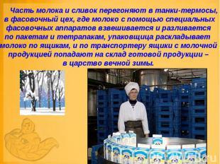 Часть молока и сливок перегоняют в танки-термосы, в фасовочный цех, где м