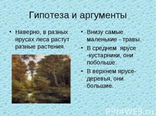 Гипотеза и аргументыНаверно, в разных ярусах леса растут разные растения.Внизу с