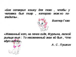 «Бог сотворил кошку для того , чтобы у человека был тигр , которого можно по гла