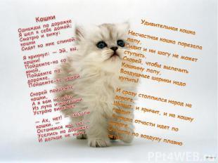 КошкиОднажды по дорожкеЯ шел к себе домой;Смотрю и вижу: кошкиСидят ко мне спин