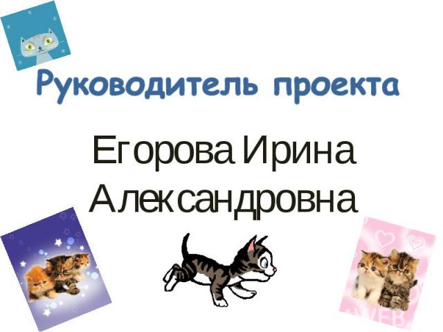 Руководитель проекта Егорова Ирина Александровна