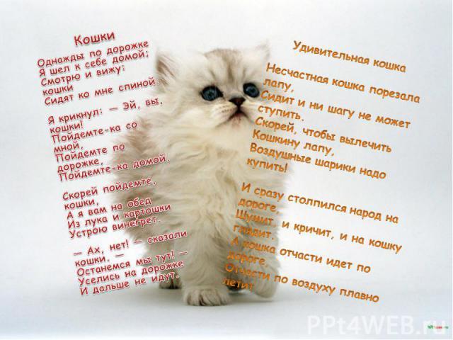 КошкиОднажды по дорожкеЯ шел к себе домой;Смотрю и вижу: кошкиСидят ко мне спиной.Я крикнул: — Эй, вы, кошки!Пойдемте-ка со мной,Пойдемте по дорожке,Пойдемте-ка домой.Скорей пойдемте, кошки,А я вам на обедИз лука и картошкиУстрою винегрет.— Ах, нет…