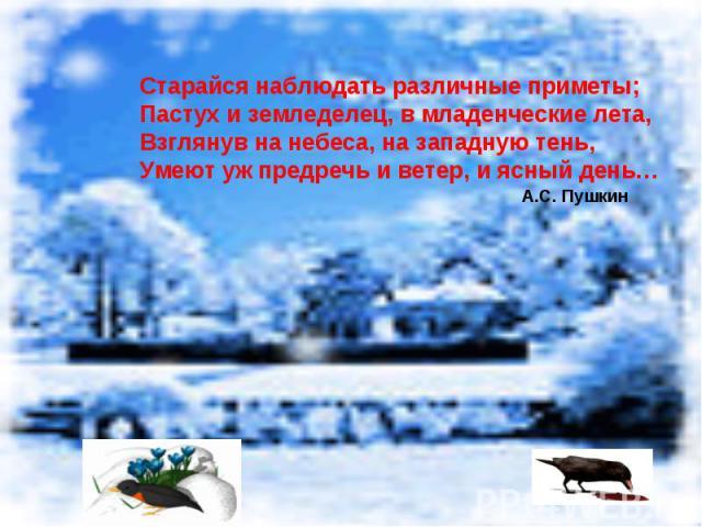 Старайся наблюдать различные приметы;Пастух и земледелец, в младенческие лета,Взглянув на небеса, на западную тень,Умеют уж предречь и ветер, и ясный день… А.С. Пушкин
